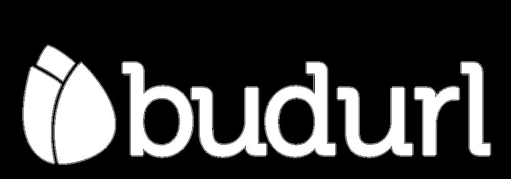 BudURL Global Support